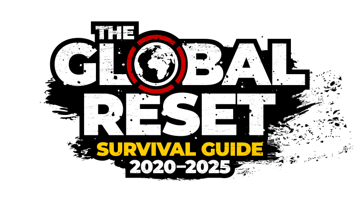 Global Reset Survival Guide